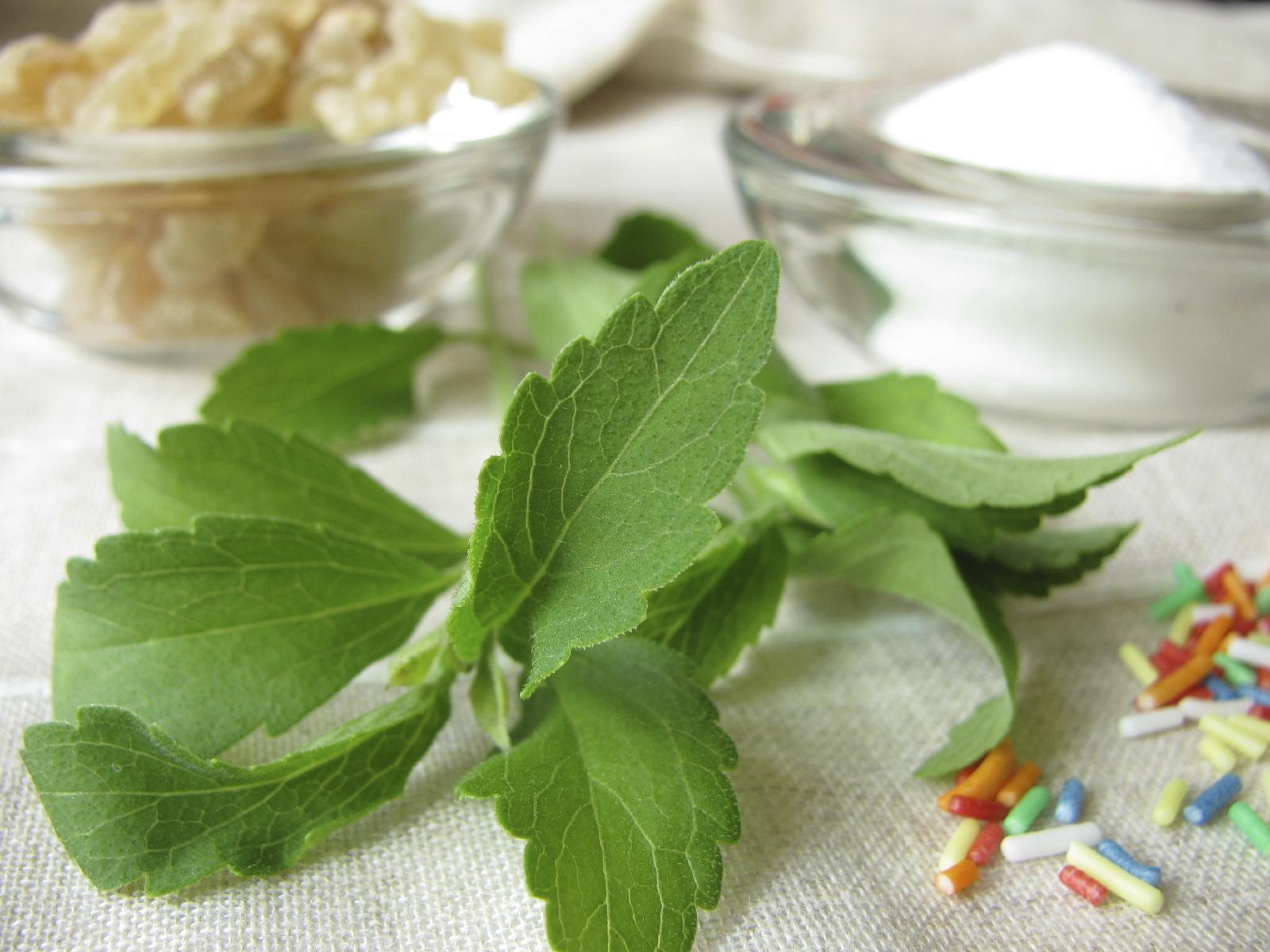 Stevia in Mediterranean diet