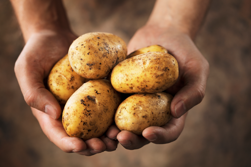 Are potatoes good for your health? Il-patata tajba għas-saħħa?