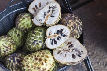 The health benefits of a wonder fruit with super nutritional properties: Cherimoya