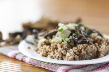 Barley with mushrooms: Xgħir (barley) bil-mushrooms