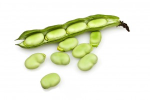 Broad beans- Ful