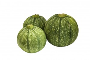 vegetable marrows round